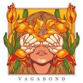 Vagabond by Noemi