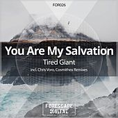 Tired Giant (Remixes) by You Are My Salvation