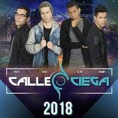 2018 by Calle Ciega (1)
