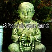 43 Peacefully Aware Sounds von Entspannungsmusik