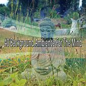40 Background Ambience For The Mind von Massage Therapy Music
