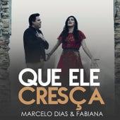 Que Ele Cresça (Playback) by Marcelo Dias & Fabiana