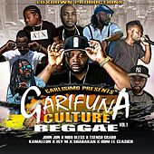 Garifuna Culture Reggae, Vol. 1 de Various Artists
