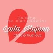 Laila Majnun de Dita Nurdian