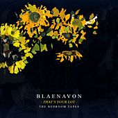 That's Your Lot: The Bedroom Tapes by Blaenavon