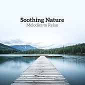Soothing Nature Melodies to Relax de Nature Sound Collection