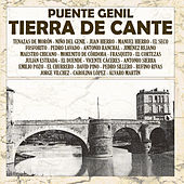 Puente Genil, Tierra De Cante by Various Artists