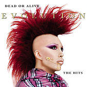 Evolution: The Hits de Dead Or Alive