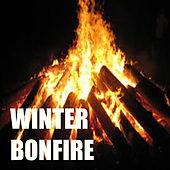 Winter Bonfire by Various Artists