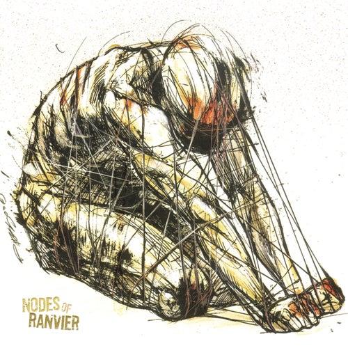Nodes Of Ranvier by Nodes Of Ranvier