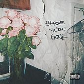 Before You're Gone by Various Artists