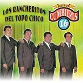 Exitos Cumbieros 16 by Los Rancheritos Del Topo Chico