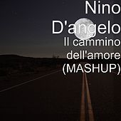 Il cammino dell'amore (MASHUP) by Nino D'Angelo