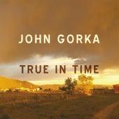 True In Time by John Gorka
