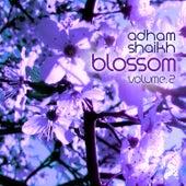 Music for Cherry Blossoms, Vol. 2 by Adham Shaikh