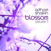 Music for Cherry Blossoms, Vol. 1 by Adham Shaikh