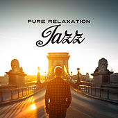 Pure Relaxation Jazz by Unspecified