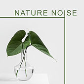 Nature Noise de Nature Sounds Artists