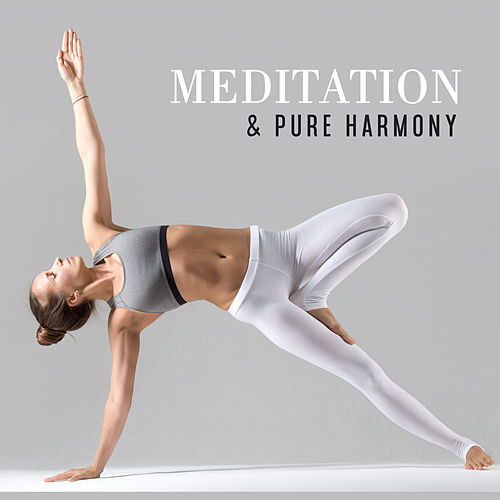 Meditation & Pure Harmony by Echoes of Nature