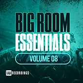 Big Room Essentials, Vol. 08 - EP by Various Artists