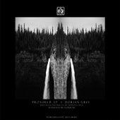 Proxima B - Single by Dorian Gray
