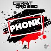 Phonk by Gerrit Grosso