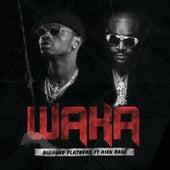 Waka by Diamond Platnumz