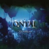 VIII - Nachtblume von Qntal