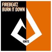 Burn It Down von Firebeatz