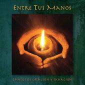 Entre Tus Manos de Various Artists