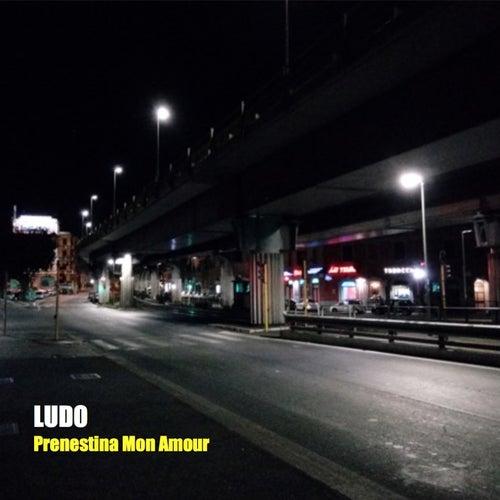 Prenestina mon amour by Ludo