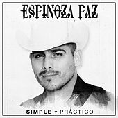 Simple y Práctico by Espinoza Paz