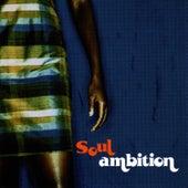 Soul Ambition by Tim Renwick