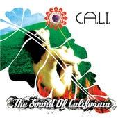 The Sound of California de Cali