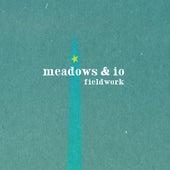 Fieldwork by The Meadows
