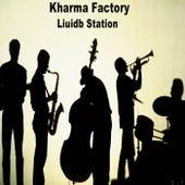 Liquidb Station - Single by Kharma Factory