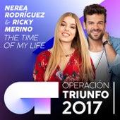 (I've Had) The Time Of My Life (Operación Triunfo 2017) de Ricky Merino