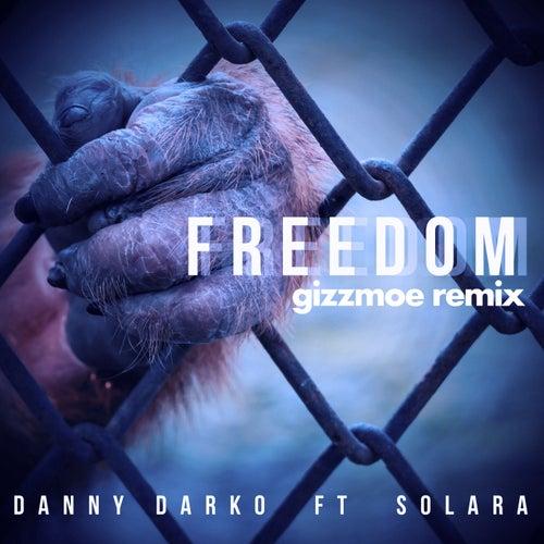 Freedom (Gizzmoe Remix) (feat. Solara) by Danny Darko