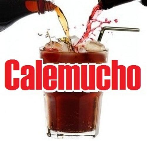 Endless Party de Calemucho