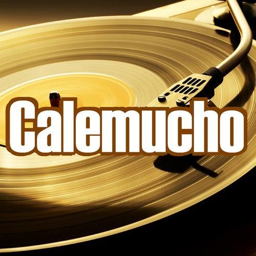 Mute de Calemucho