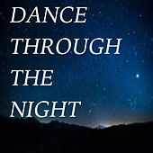 Dance Through The Night by Various Artists