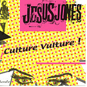 Culture Vulture de Jesus Jones