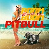 Muévelo Loca Boom Boom de Pitbull