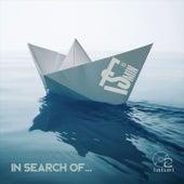 In Search Of... von Flaer Smin