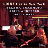 Lions Live in New York by Yelena Eckemoff