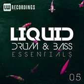 Liquid Drum & Bass Essentials, Vol. 05 - EP by Various Artists