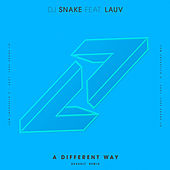 A Different Way (DEVAULT Remix) van Lauv