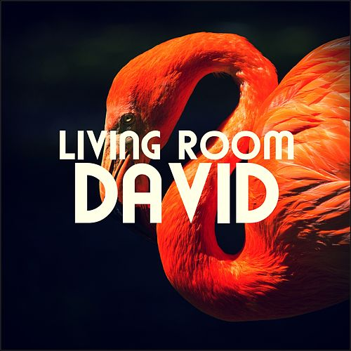 David by Living Room