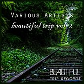 Beautiful Trip, Vol. 2 by Various Artists