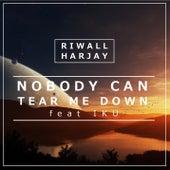 Nobody Can Tear Me Down (feat. IKU) by Riwall Harjay